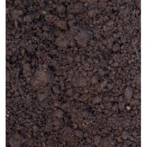 zwarte-grond