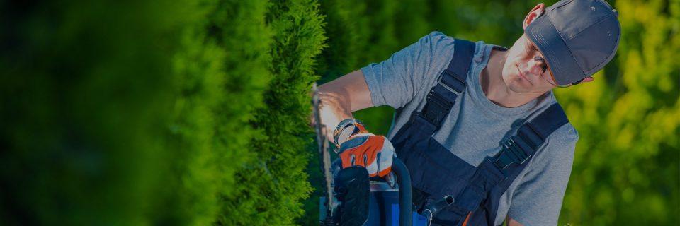 Wij zijn al 30 jaar actief bezig met het verwezenlijken van tuin wensen.