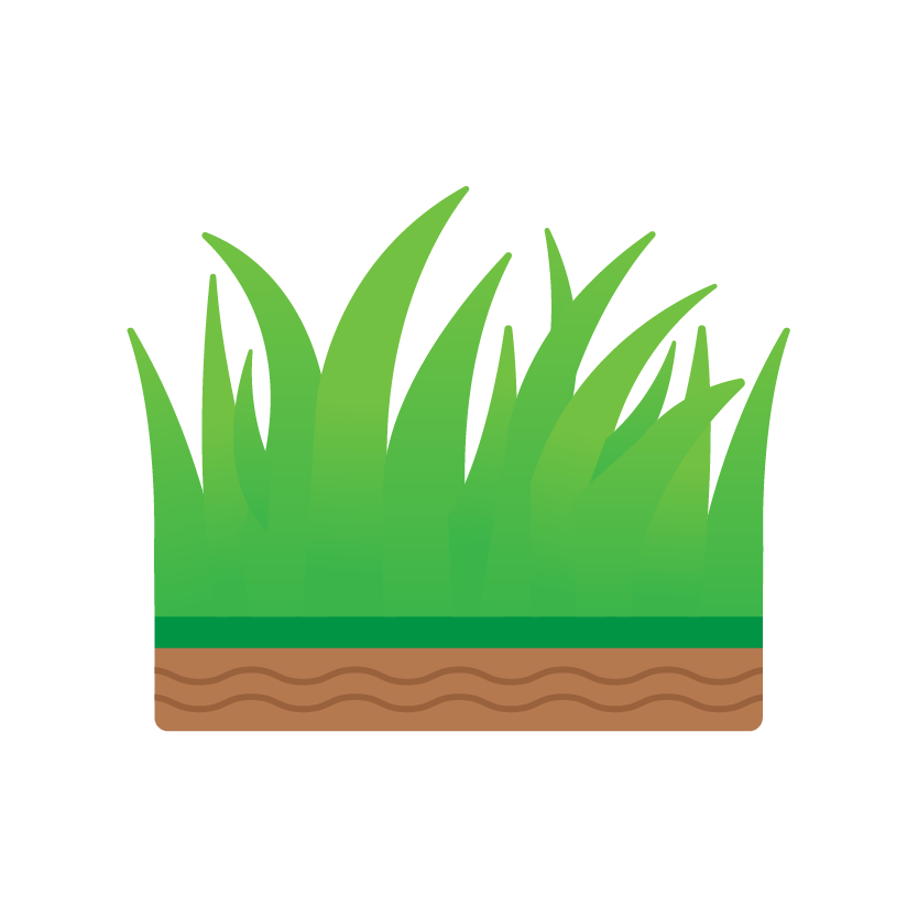Graszoden