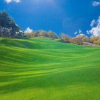 Golfbanen NL & BE