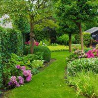 Jaarlijks 500+ tuinen